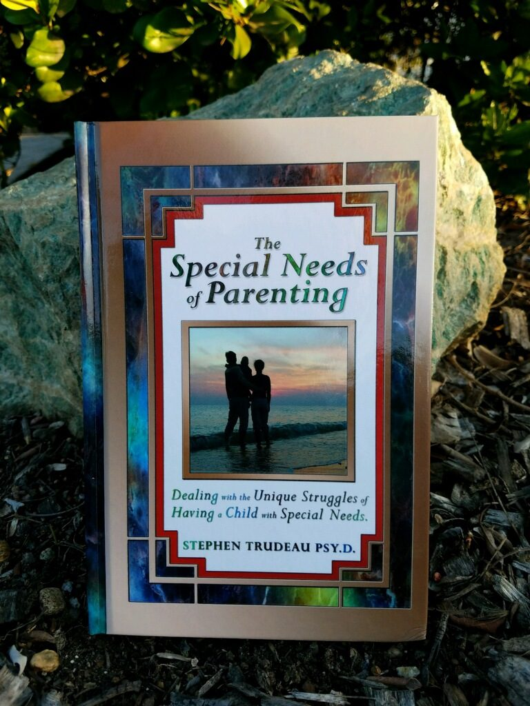 Cover Photo of Book - The Special Needs of Parenting